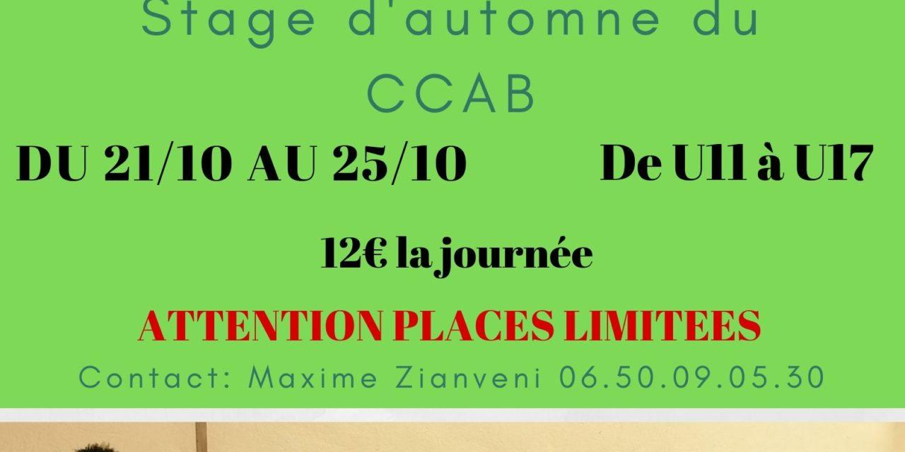 http://lecannetbasket.fr/wp-content/uploads/2019/10/Stage-dautomne-du-CCAB-terminé-1280x640.jpg